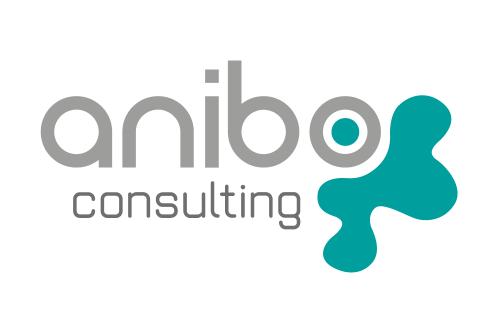 Anibo Consulting logo